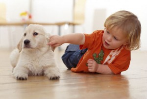 Happy Toddler with Dog