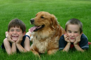 Stress Free Kids with Dog